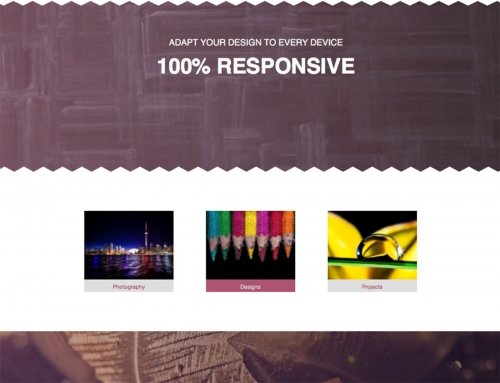 museum-multipurpose-muse--template-4