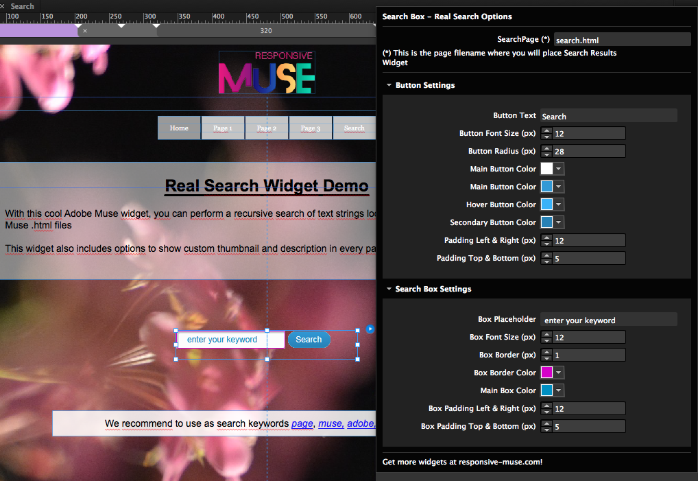 real-search-instructions-widget