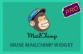 mailchimp-widget-pro